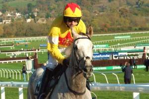 Al Ferof one of the runners in the Paddy Power Gold Cup at Cheltenham