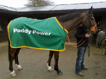 Hunt Ball will race in the Paddy Power Gold Cup at Cheltenham racecourse