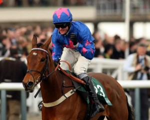 Cue Card wins Haldon Gold Cup Chase at Exeter