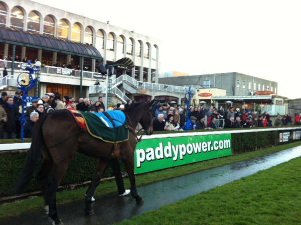 Arvika Ligeonniere a good looking winning horse at Leopardstown on Boxing Day