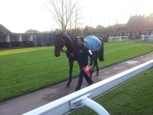 Sprinter Sacre wins Tingle Creek at Sandown