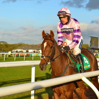 silviniaco contin one of 8 winning tips from VG TIPS