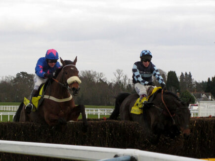 cue card and captain chris head for cheltenham