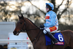 Goluanes one of three winners for VG TIPS at Wetherby Racecourse