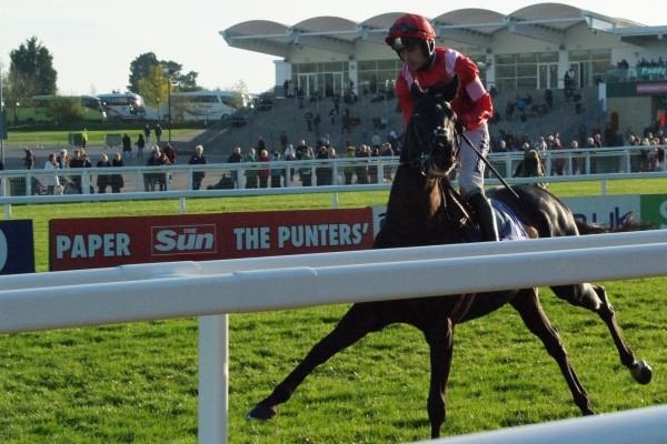 Sanctuaire backed at 50-1 by Joe McNally for VG TIPS