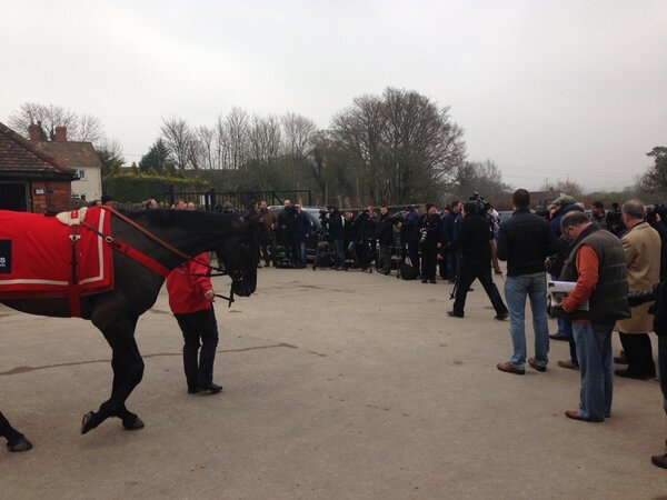 Media day at Manor Farm Stables