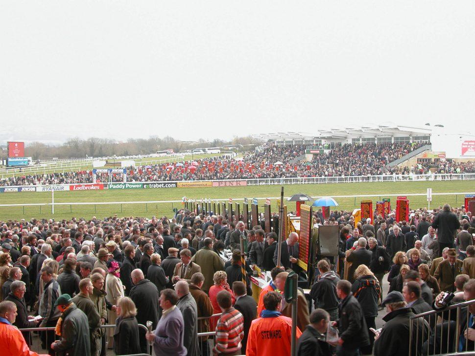 cheltenham festival crowds vg tips