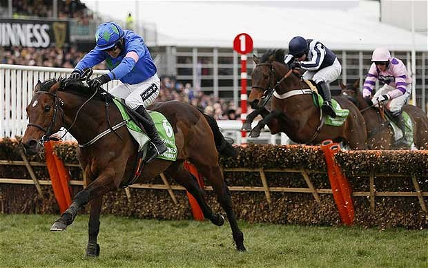 Hurricane Fly wins at Cheltenham Festival vgtips