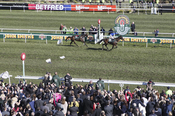 auroras encore wins the grand national vg tips
