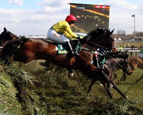 battlefront dies in the fox hunters chase at aintree