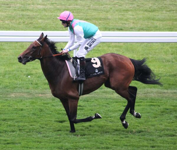 Riposte wins at ascot for lady jane cecil
