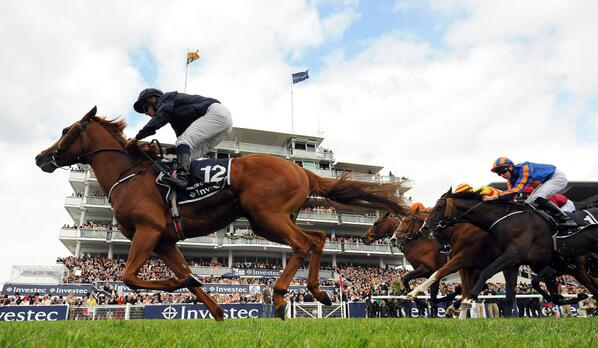 ruler of the world wins the 2013 investec derby