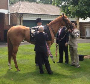 Duntle wins at royal ascot