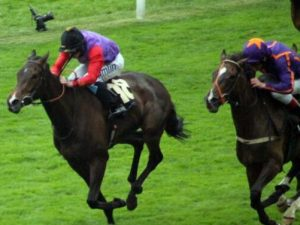 Royal Ascot Review Day 3. A day so fabulous Ryan Moore made the Queen laugh