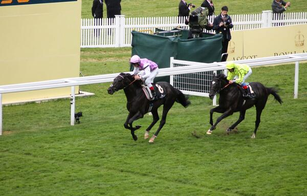 Thomas Chippendale wins. Photo by Paul Ostermeyer