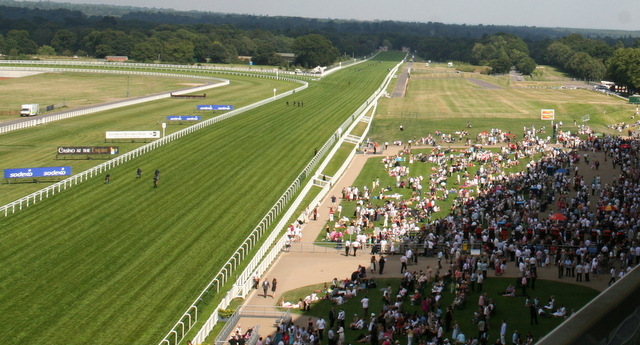 race preview of king george vi and qe stakes at ascot
