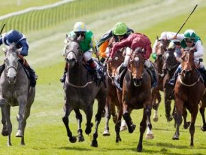 VG Tips £10 Special Offer – Guineas to Derby Special Offer