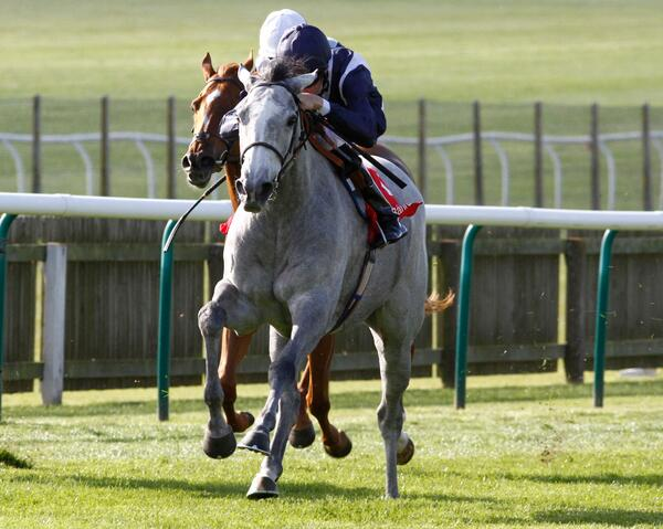 sky lantern wins at newmarket photo by raccourse