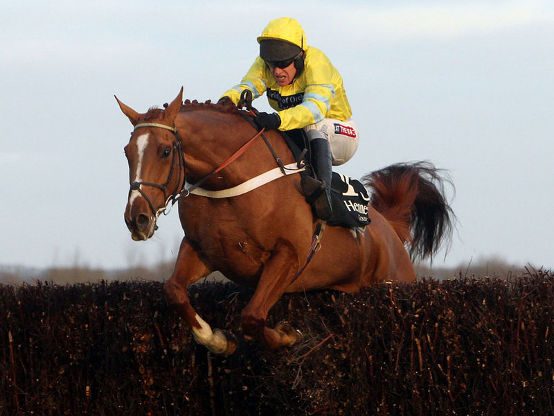 Triolo D'Alene Hennessy Gold Cup a 20/1 winner for members.
