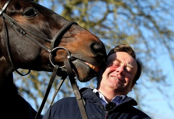 henderson and sprinter sacre