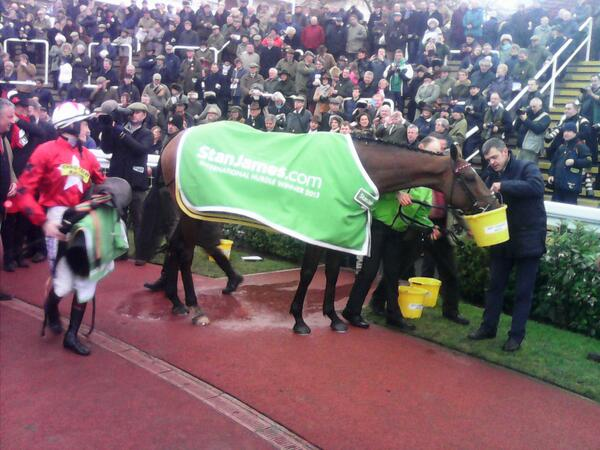the new one wins at cheltenham in december for members of vgtips