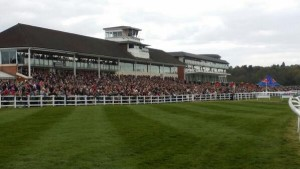 lingfield pk packed stand by matt chapman on good friday