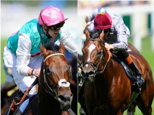 kingman and toronado by c4 racing