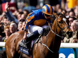 Gleneagles wins 2000 Guineas on a profitable day of punting at VG TIPS
