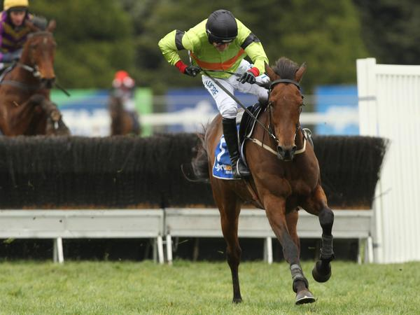 Final fence drama for Bashboy and Ruby Walsh