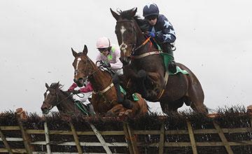 Three Stars wins at 12/1. Photo: Patrick McCann