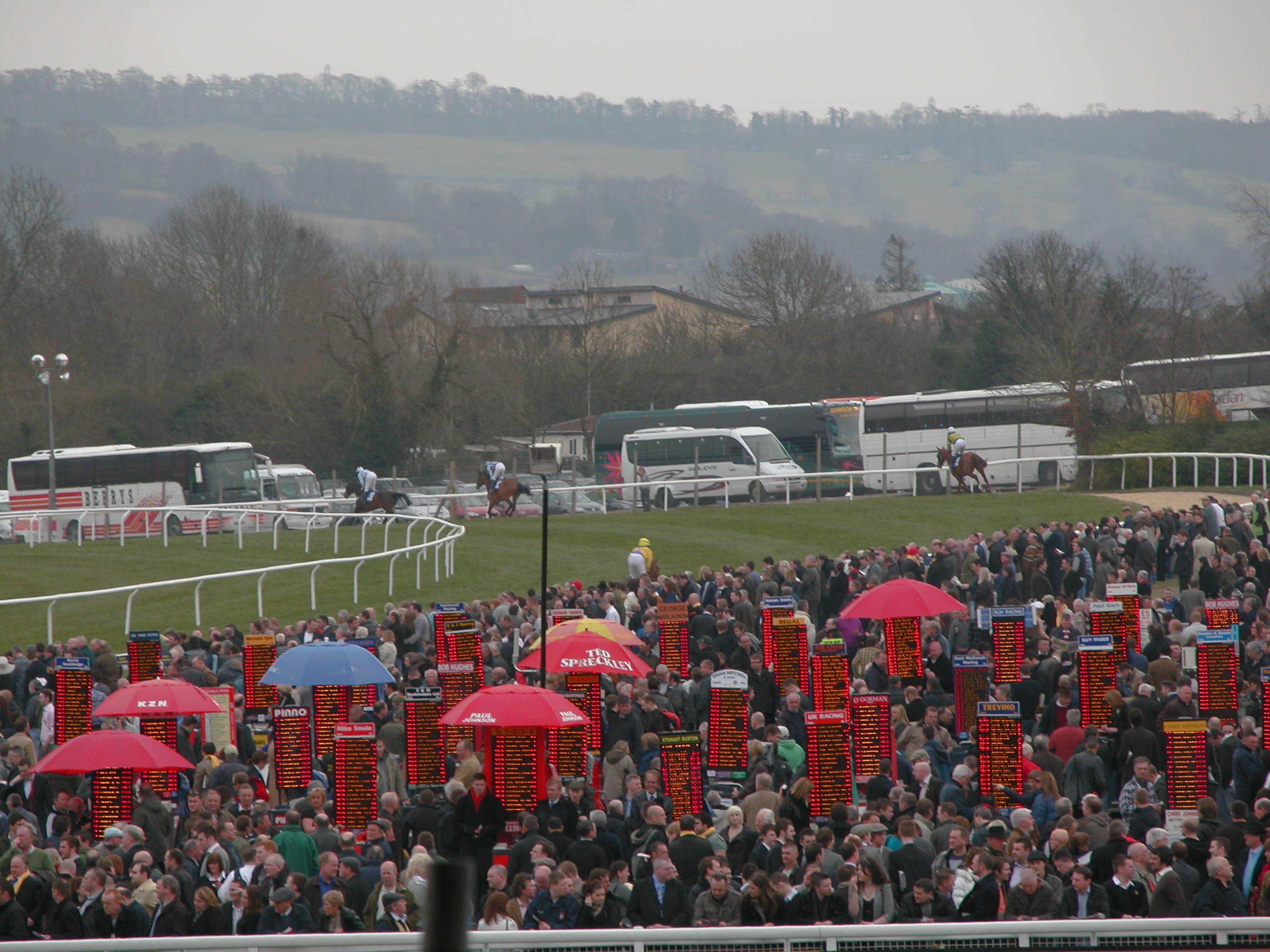 vgtips picture of cheltenham festival