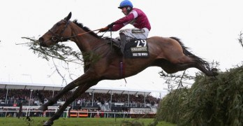 Rule the world jumps Aintree fence to land the grandnational