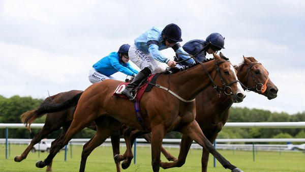 Richard Fahey trained Garcia wins at Haydock Park