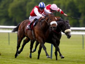 Four odds against winners on Saturday for members of VG TIPS