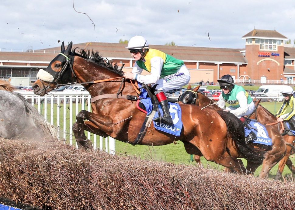vicente jumps to victory at ayr