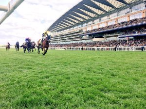 VG Tips members in the money as the old 1-2 strikes at Ascot. Twice!