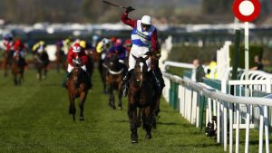 one for arthur was tipped to win the grand national at odds of 40/1 by vgtips