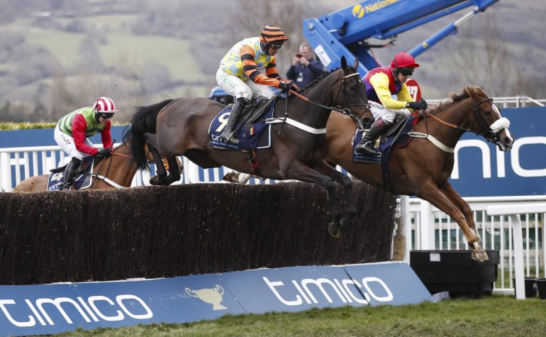 native river and might bite jump fence at cheltenham