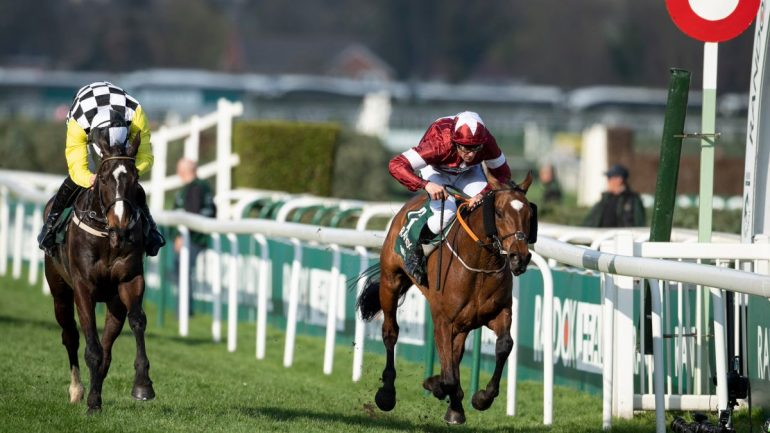 VG Tips the winner of the Grand National for third year running