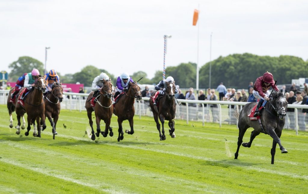roaring lion wins the dante stakes