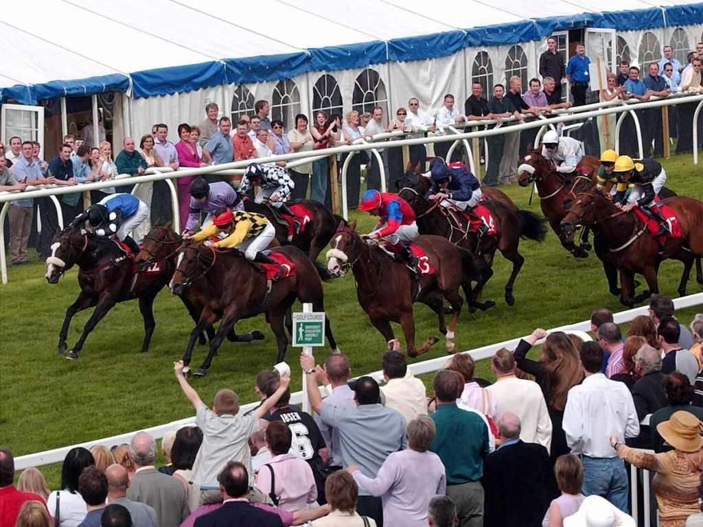 happy punters punch the air at musselburgh racecourse