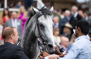 lord glitters wins at york at odds of 2/1