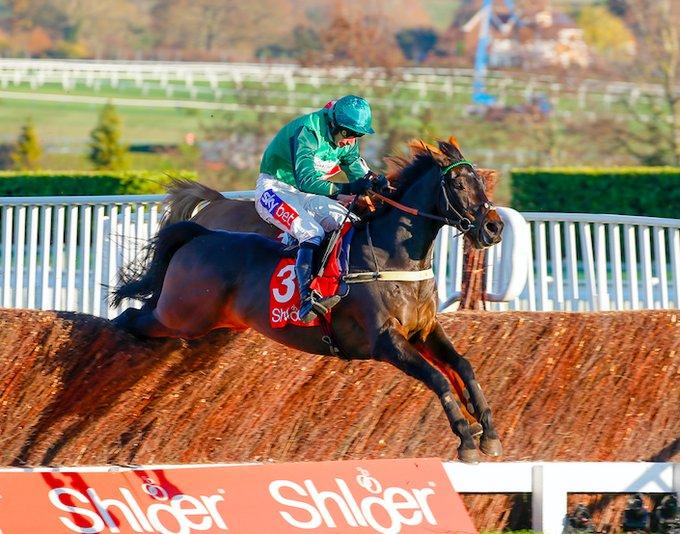 sceau royal wins shloer chase