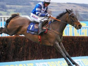 Frodon and Frost thaw out and win for VG Tips members