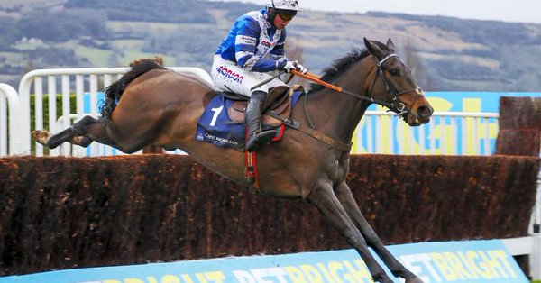 frodon jumps perfectly to win at cheltenham