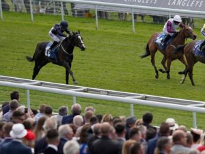 Good Vibes a 20/1 winner for members of VG Tips – the week in review