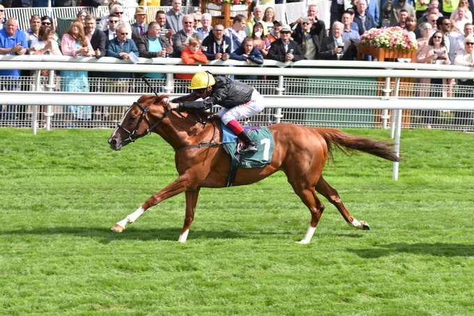 stradivarius wins at york