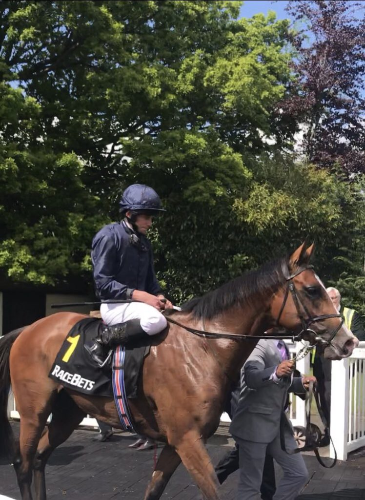 anthony van dyck and ryan moore
