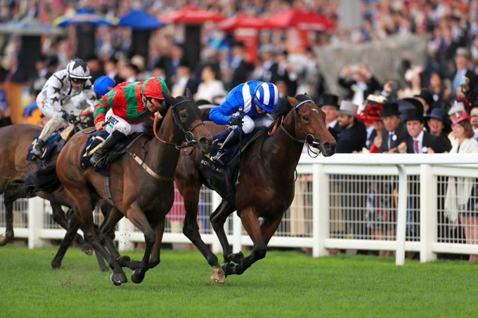 Afaak wins at royal ascot