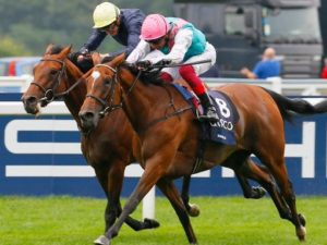Watch Enable and Crystal Ocean in thrilling fight to the finish